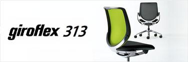 giroflex 313
