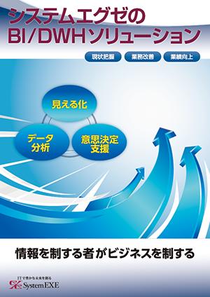 BI/DWHソリューション:サービス紹介カタログ