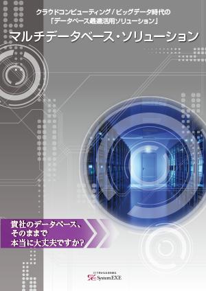 マルチデータベースソリューション:サービス紹介カタログ