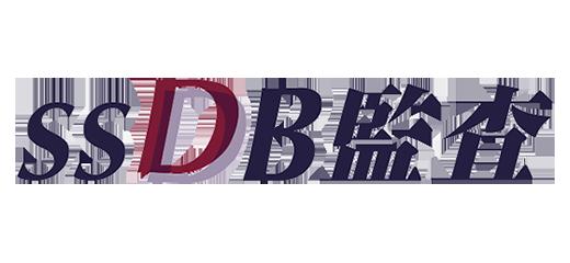 SSDB監査