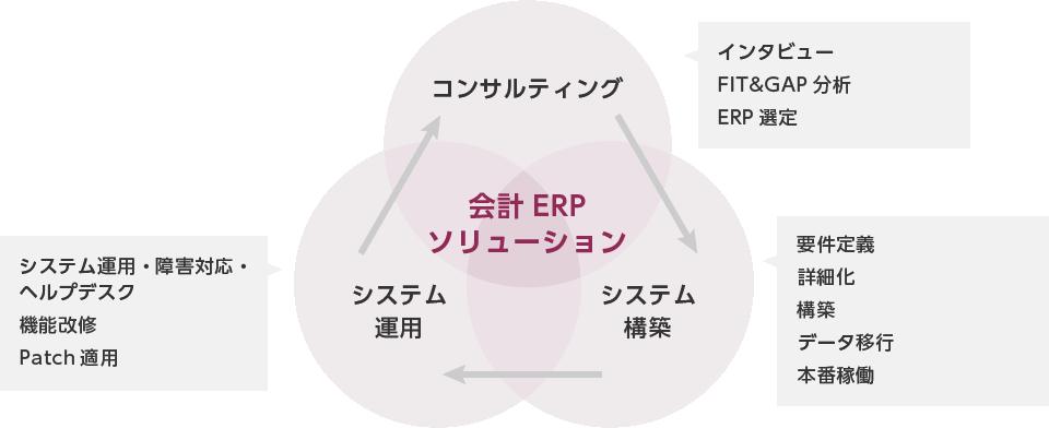 会計ERPソリューション サービスイメージ